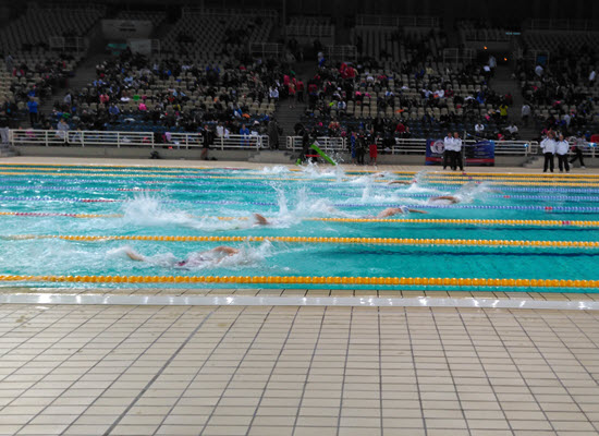 21 02 17 swimming 400px